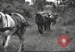 Image of Chinese troops Burma, 1943, second 27 stock footage video 65675061558
