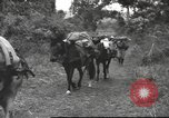 Image of Chinese troops Burma, 1943, second 28 stock footage video 65675061558