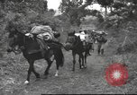 Image of Chinese troops Burma, 1943, second 29 stock footage video 65675061558