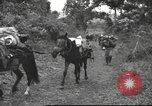 Image of Chinese troops Burma, 1943, second 30 stock footage video 65675061558
