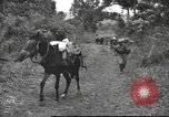 Image of Chinese troops Burma, 1943, second 31 stock footage video 65675061558