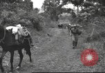 Image of Chinese troops Burma, 1943, second 32 stock footage video 65675061558