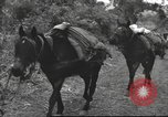 Image of Chinese troops Burma, 1943, second 33 stock footage video 65675061558