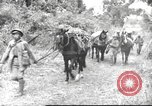 Image of Chinese troops Burma, 1943, second 36 stock footage video 65675061558