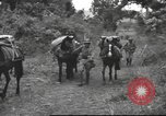 Image of Chinese troops Burma, 1943, second 39 stock footage video 65675061558