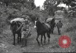 Image of Chinese troops Burma, 1943, second 41 stock footage video 65675061558