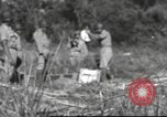 Image of Chiense soldiers Burma, 1943, second 14 stock footage video 65675061561