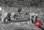 Image of Chiense soldiers Burma, 1943, second 22 stock footage video 65675061561