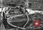 Image of Chiense soldiers Burma, 1943, second 50 stock footage video 65675061561