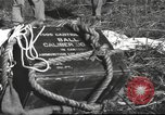 Image of Chiense soldiers Burma, 1943, second 55 stock footage video 65675061561
