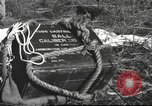 Image of Chiense soldiers Burma, 1943, second 57 stock footage video 65675061561