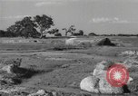 Image of Chinese troops India, 1943, second 44 stock footage video 65675061578