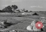 Image of Chinese troops India, 1943, second 46 stock footage video 65675061578