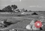 Image of Chinese troops India, 1943, second 52 stock footage video 65675061578
