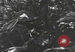 Image of Chinese soldier Burma, 1944, second 58 stock footage video 65675061587