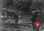 Image of Merrill's Marauders Burma, 1944, second 8 stock footage video 65675061591