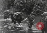 Image of Merrill's Marauders Burma, 1944, second 12 stock footage video 65675061591
