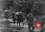 Image of Merrill's Marauders Burma, 1944, second 13 stock footage video 65675061591
