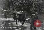 Image of Merrill's Marauders Burma, 1944, second 14 stock footage video 65675061591
