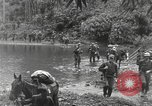 Image of Merrill's Marauders Burma, 1944, second 16 stock footage video 65675061591
