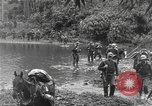 Image of Merrill's Marauders Burma, 1944, second 17 stock footage video 65675061591