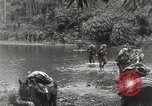 Image of Merrill's Marauders Burma, 1944, second 25 stock footage video 65675061591