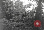 Image of Merrill's Marauders Burma, 1944, second 31 stock footage video 65675061591