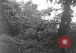 Image of Merrill's Marauders Burma, 1944, second 36 stock footage video 65675061591