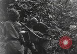 Image of Merrill's Marauders Burma, 1944, second 46 stock footage video 65675061591