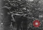 Image of Merrill's Marauders Burma, 1944, second 49 stock footage video 65675061591