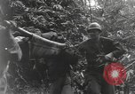 Image of Merrill's Marauders Burma, 1944, second 51 stock footage video 65675061591
