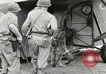 Image of CG-4 gliders Myitkyina Burma, 1944, second 60 stock footage video 65675061620