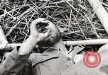 Image of United States soldiers Myitkyina Burma, 1944, second 8 stock footage video 65675061622