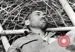 Image of United States soldiers Myitkyina Burma, 1944, second 12 stock footage video 65675061622