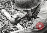 Image of United States soldiers Myitkyina Burma, 1944, second 17 stock footage video 65675061622