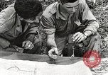 Image of United States Army Air Forces Myitkyina Burma, 1944, second 19 stock footage video 65675061624