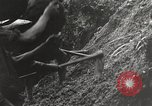 Image of road Burma, 1944, second 57 stock footage video 65675061639