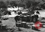 Image of United States soldiers Burma, 1944, second 60 stock footage video 65675061650