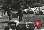 Image of United States soldiers Burma, 1944, second 14 stock footage video 65675061651