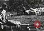 Image of United States soldiers Burma, 1944, second 18 stock footage video 65675061651