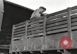 Image of United States soldiers Burma, 1944, second 48 stock footage video 65675061652