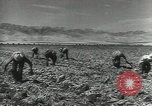 Image of United States Military units United States USA, 1956, second 37 stock footage video 65675061664