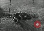 Image of United States troops European Theater, 1956, second 6 stock footage video 65675061674