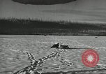 Image of US Army Airborne training activities United States USA, 1956, second 42 stock footage video 65675061686