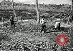 Image of United States soldiers Vietnam, 1964, second 32 stock footage video 65675061701