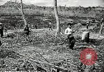 Image of United States soldiers Vietnam, 1964, second 33 stock footage video 65675061701