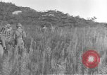 Image of American infantry wading through water Korea, 1953, second 16 stock footage video 65675061714