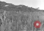 Image of American infantry wading through water Korea, 1953, second 17 stock footage video 65675061714
