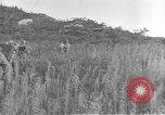Image of American infantry wading through water Korea, 1953, second 18 stock footage video 65675061714
