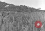 Image of American infantry wading through water Korea, 1953, second 19 stock footage video 65675061714